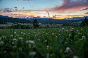 Montana, mountain views,